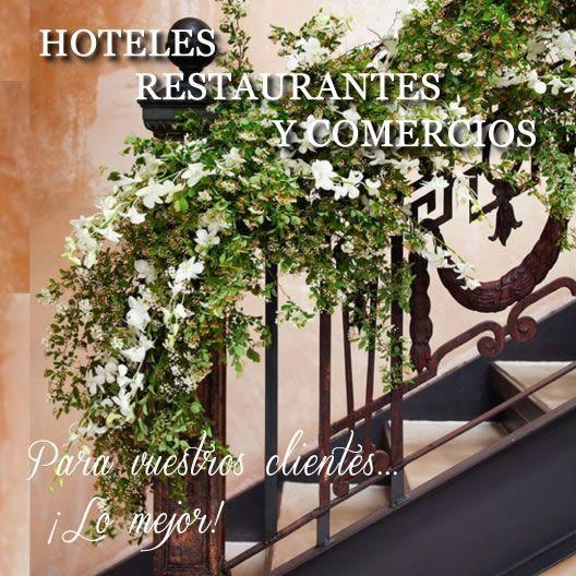 hoteles restaurantes y comercios
